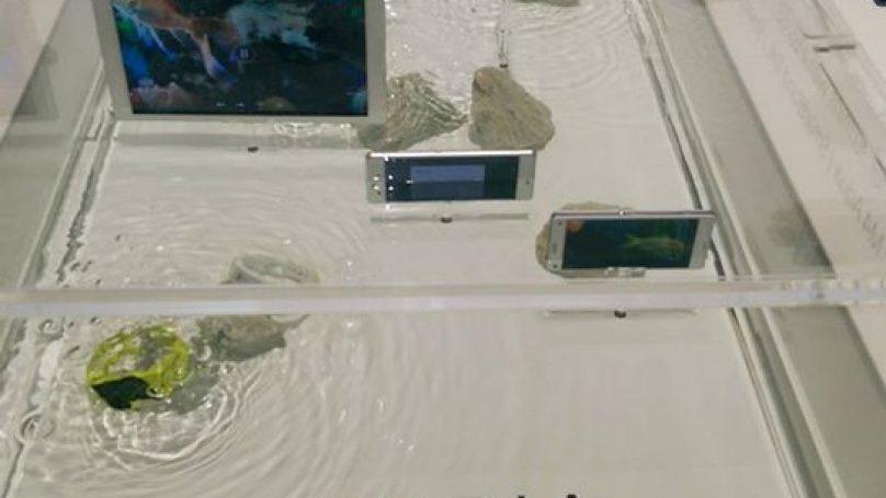 Sony Xperia Waterproof series