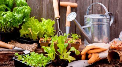Τα εργαλεία που πρέπει να έχει κάθε κηπουρός!
