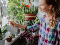 Ασχολήσου με τα φυτά σου