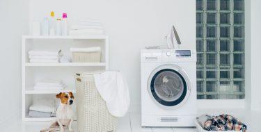 Χρήσιμες λειτουργίες στο πλύσιμο & στέγνωμα των ρούχων αν έχεις κατοικίδιο